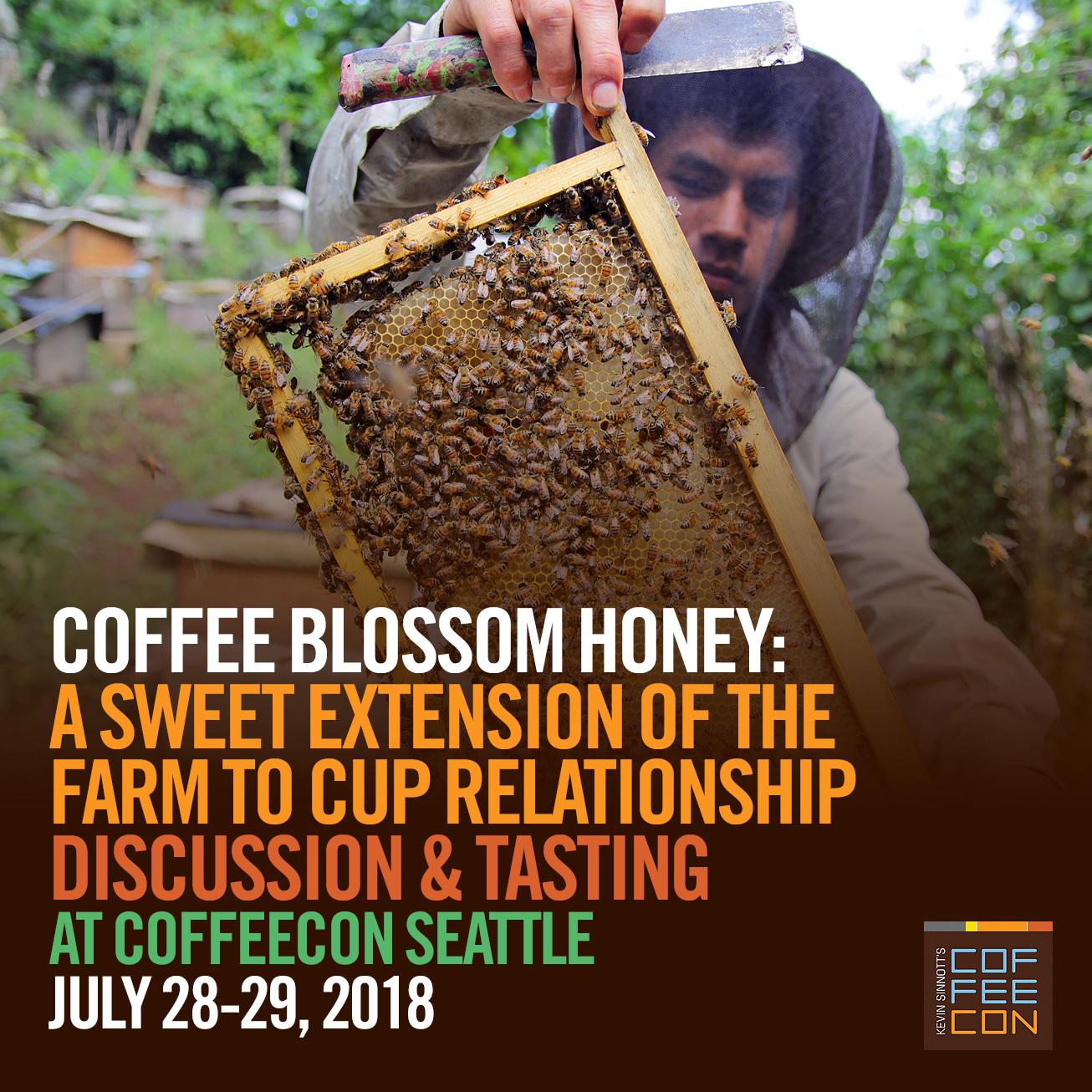 Coffee Blossom Honey